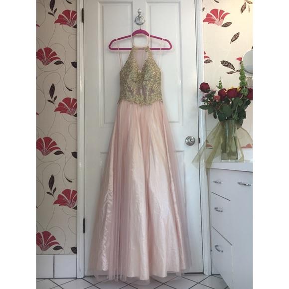 Blondie Nites Dresses & Skirts - Blondie Nites™️ Peach and Gold Gown